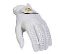 Tour Premium Glove product image